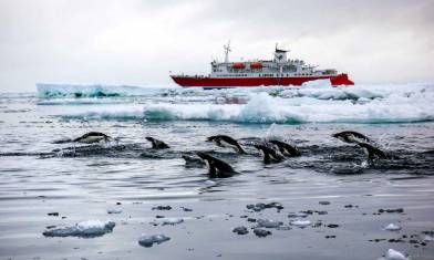 Spirit of Shackleton - M/S Expedition