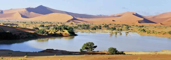 Cape Desert Safari (nordwärts)