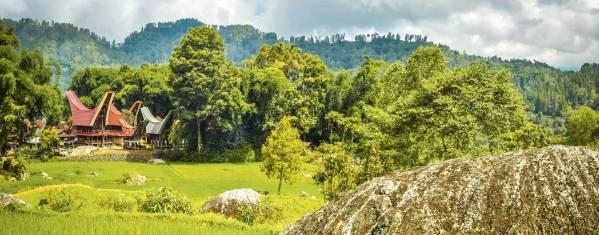 Erlebnisreise Südsulawesi – Vom Traumstrand ins Torajaland