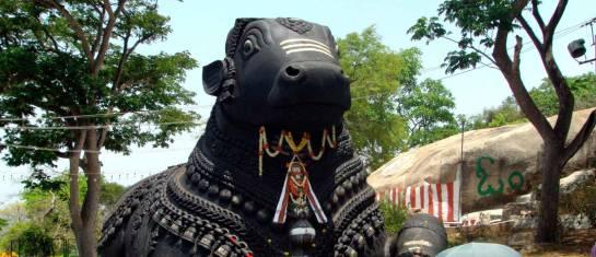 Südindien - Von Trivandrum nach Goa