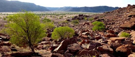 Kalahari Wüsten Abenteuerreise