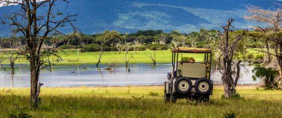 Flugsafari: Selous Wildreservat