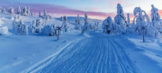 Skilanglaufen entlang der russischen Grenze