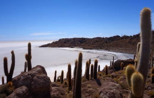 Isla Incahuasi im atemberaubenden Salar de Uyuni
