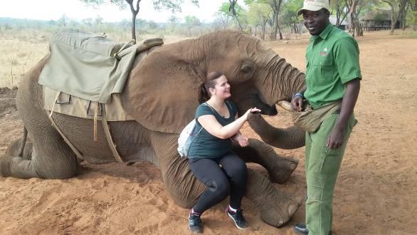 Afrikas unglaublicher Tierwelt so nah.