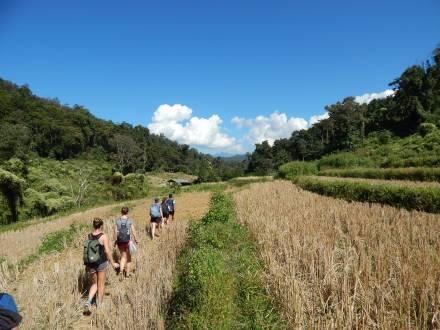 Thailand Norden Bergvölker Wanderung