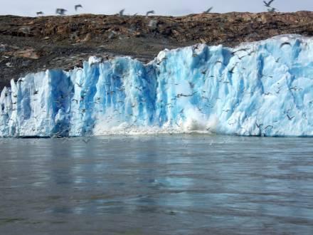 service_reiseberichte_groenland-wanderreise-greenland-qaleraliq-glacier.jpg