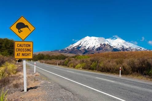 Warnung vor Kiwi Vögeln
