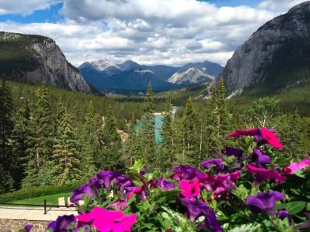 Herrlicher Blick auf Kanadas wundervolle Landschaft!